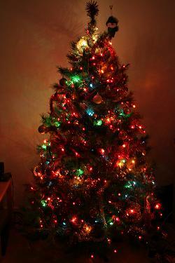 chrissie-tree.JPG