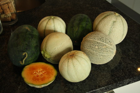 melons_small